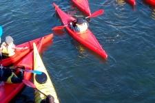 ndsc-cm1-kayak-2017-2