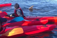 ndsc-cm1-kayak-2017-7