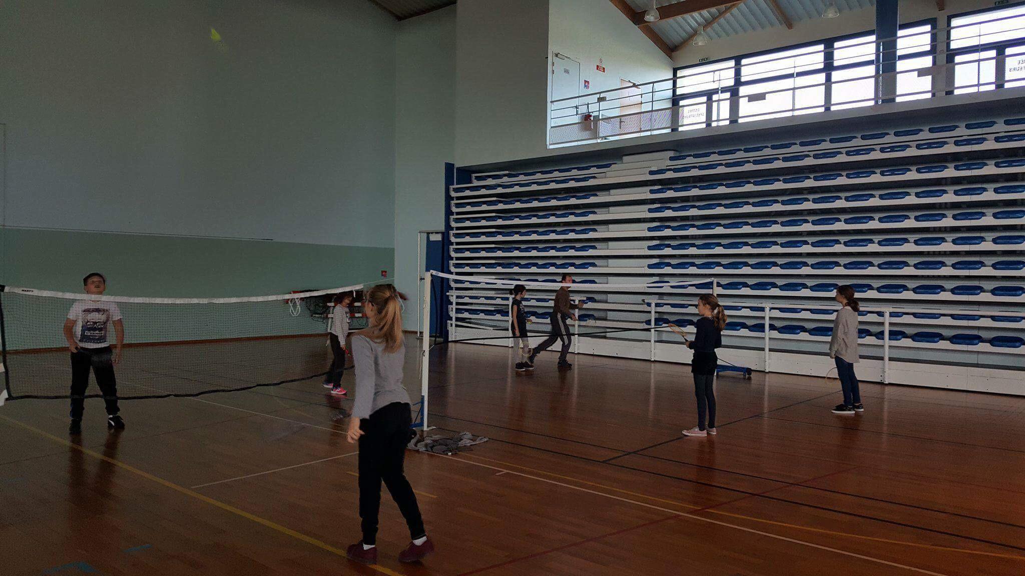 ndsc-cm2-badminton-2017-4