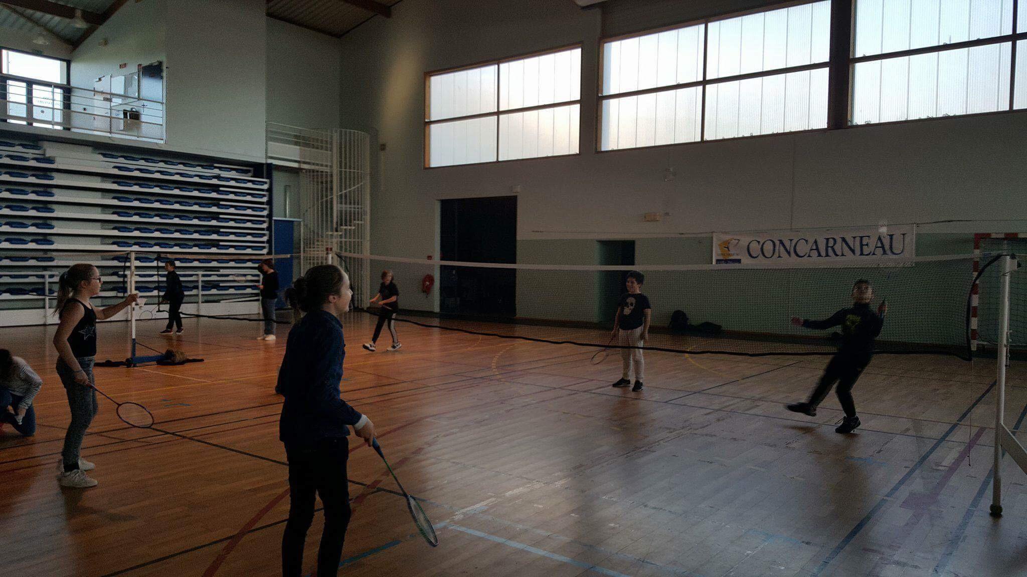 ndsc-cm2-badminton-2017-6