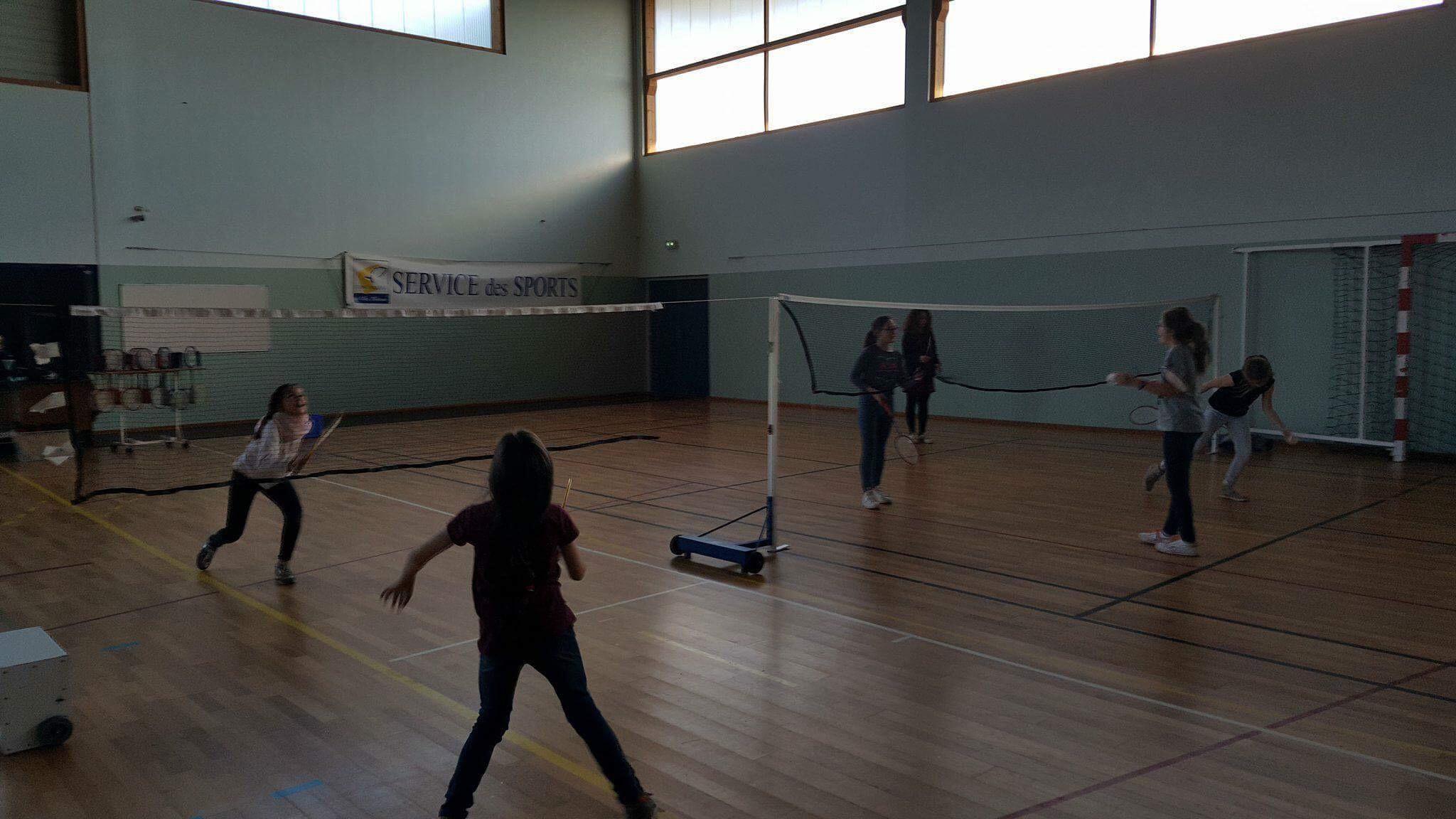 ndsc-cm2-badminton-2017-8
